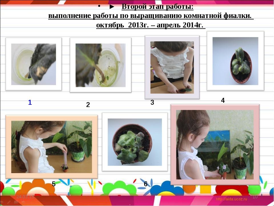 ► Второй этап работы: выполнение работы по выращиванию комнатной фиалки. окт...