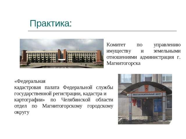 Практика: Комитет по управлению имуществу и земельными отношениями администра...
