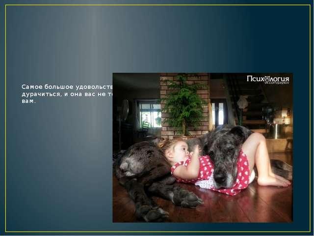 Самое большое удовольствие для владельца собаки — то, что при ней можно дурач...