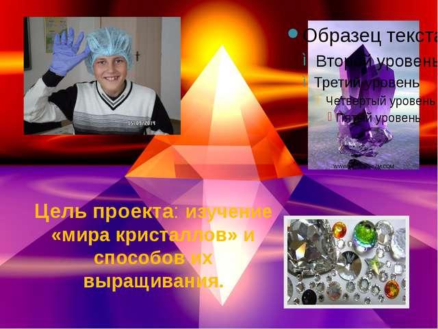 Цель проекта: изучение «мира кристаллов» и способов их выращивания.