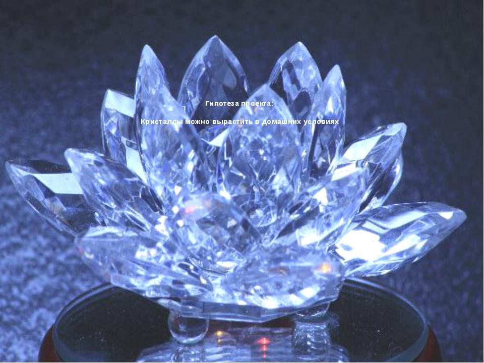 Гипотеза проекта: Кристаллы можно вырастить в домашних условиях.