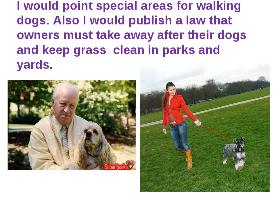I would point special areas for walking dogs. Also I would publish a law tha...