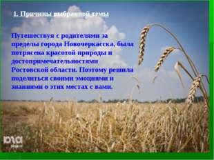 1. Причины выбранной темы Путешествуя с родителями за пределы города Новочерк