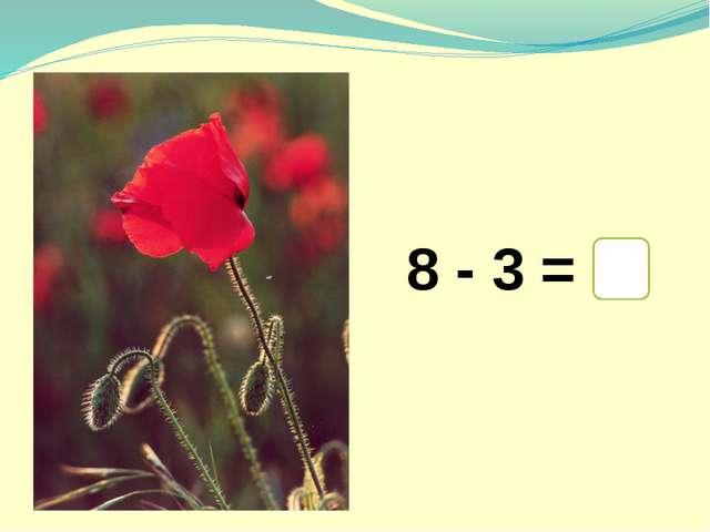 8 - 3 = 5
