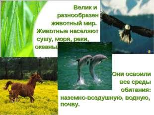 Велик и разнообразен животный мир. Животные населяют сушу, моря, реки, океаны
