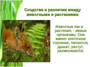 Сходства и различия между животными и растениями Животные как и растения, - ж