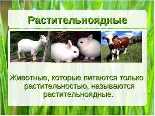 Растительноядные Животные, которые питаются только растительностью, называютс