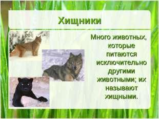 Хищники Много животных, которые питаются исключительно другими животными; их