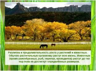 Title Различна и продолжительность роста у растений и животных. Обычно растит