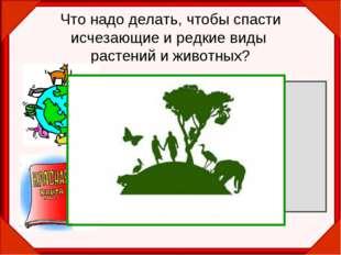 Что надо делать, чтобы спасти исчезающие и редкие виды растений и животных? З