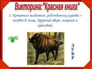 1. Копытное животное, родственник коровы – живёт в лесах. Крупный зверь, мощн