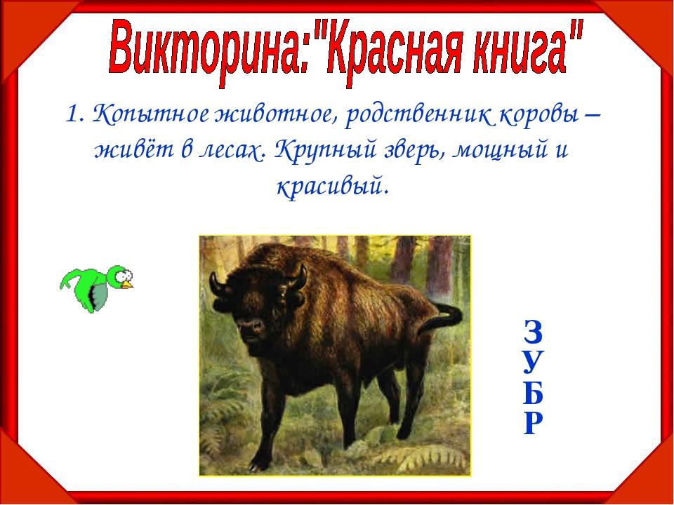 1. Копытное животное, родственник коровы – живёт в лесах. Крупный зверь, мощн...