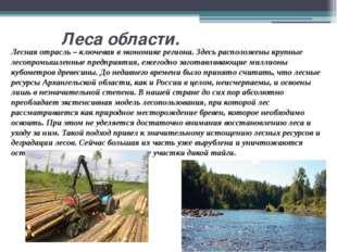 Леса области. Лесная отрасль – ключевая в экономике региона. Здесь расположе