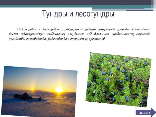 Тундры и лесотундры Для тундры и лесотундры характерны локальные нарушения п...