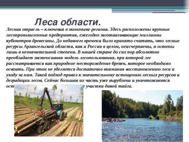 Леса области. Лесная отрасль – ключевая в экономике региона. Здесь расположе...