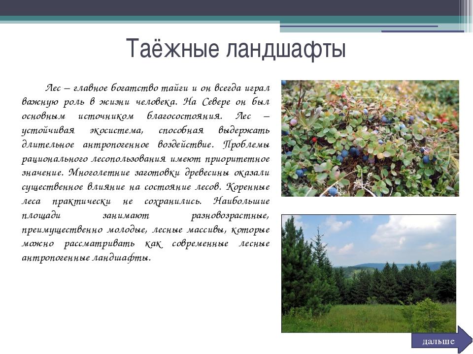 Таёжные ландшафты Лес – главное богатство тайги и он всегда играл важную ро...
