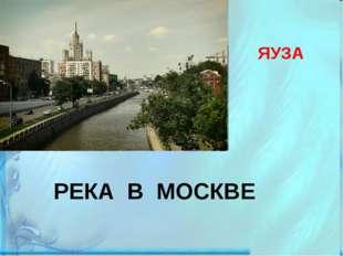 ЯУЗА РЕКА В МОСКВЕ