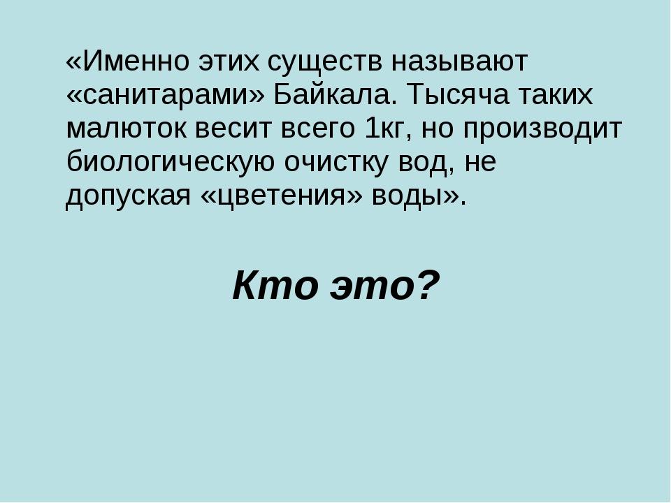 «Именно этих существ называют «санитарами» Байкала. Тысяча таких малюток вес...