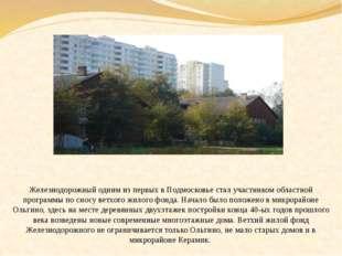 Железнодорожный одним из первых в Подмосковье стал участником областной прог