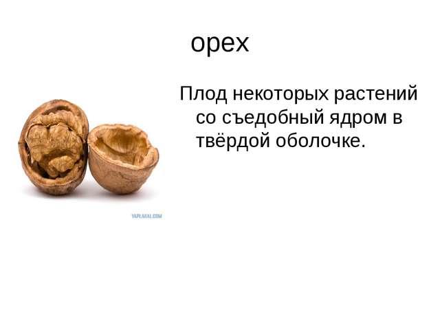 орех Плод некоторых растений со съедобный ядром в твёрдой оболочке.