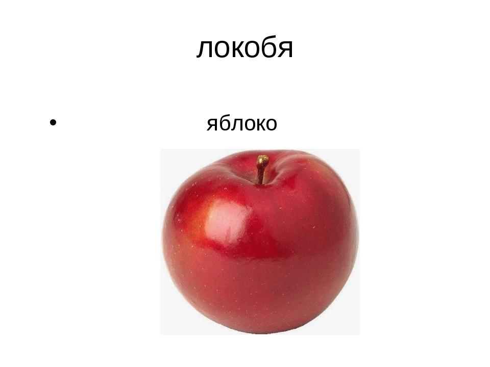 локобя яблоко