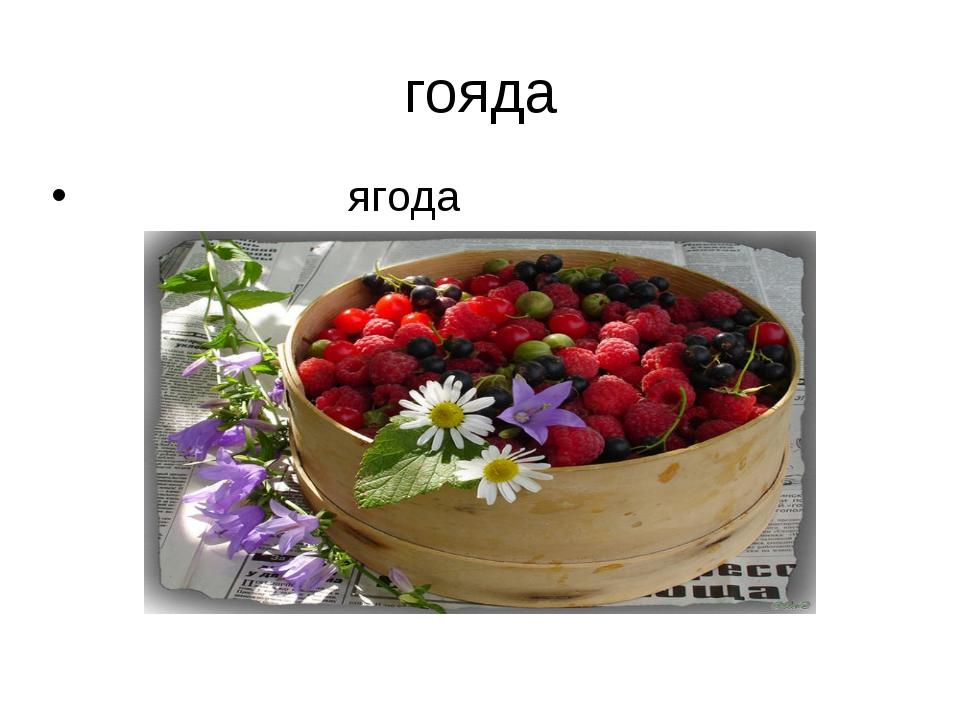 гояда ягода