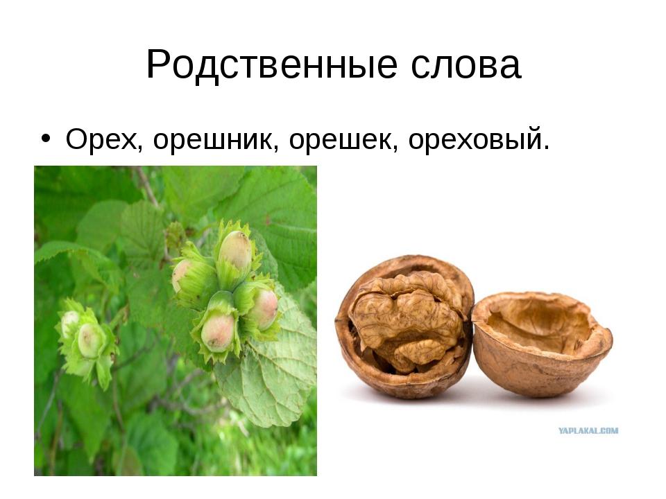 Родственные слова Орех, орешник, орешек, ореховый.