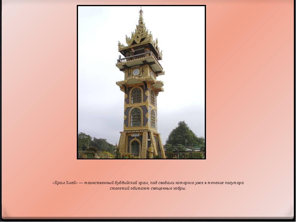 «Храм Змей» — таинственный буддийский храм, под сводами которого уже в течени...