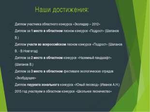 Наши достижения: Диплом участника областного конкурса «Эколидер – 2012» Дипло