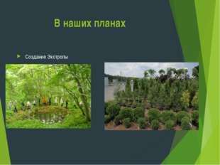 В наших планах Создание Экотропы Организация питомника