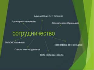 сотрудничество Красноярское лесничество Администрация п.г.т. Волжский Красноя
