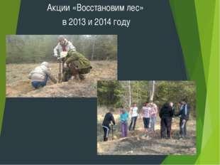 Акции «Восстановим лес» в 2013 и 2014 году