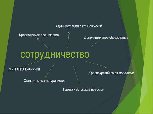 сотрудничество Красноярское лесничество Администрация п.г.т. Волжский Красноя...
