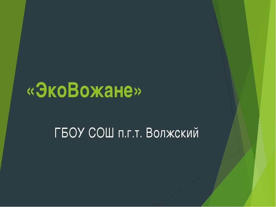 «ЭкоВожане» ГБОУ СОШ п.г.т. Волжский