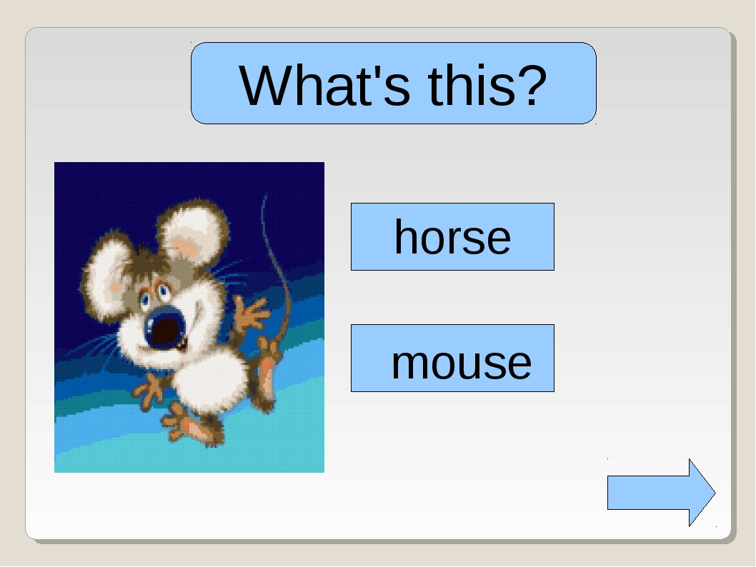 What's this? horse mouse