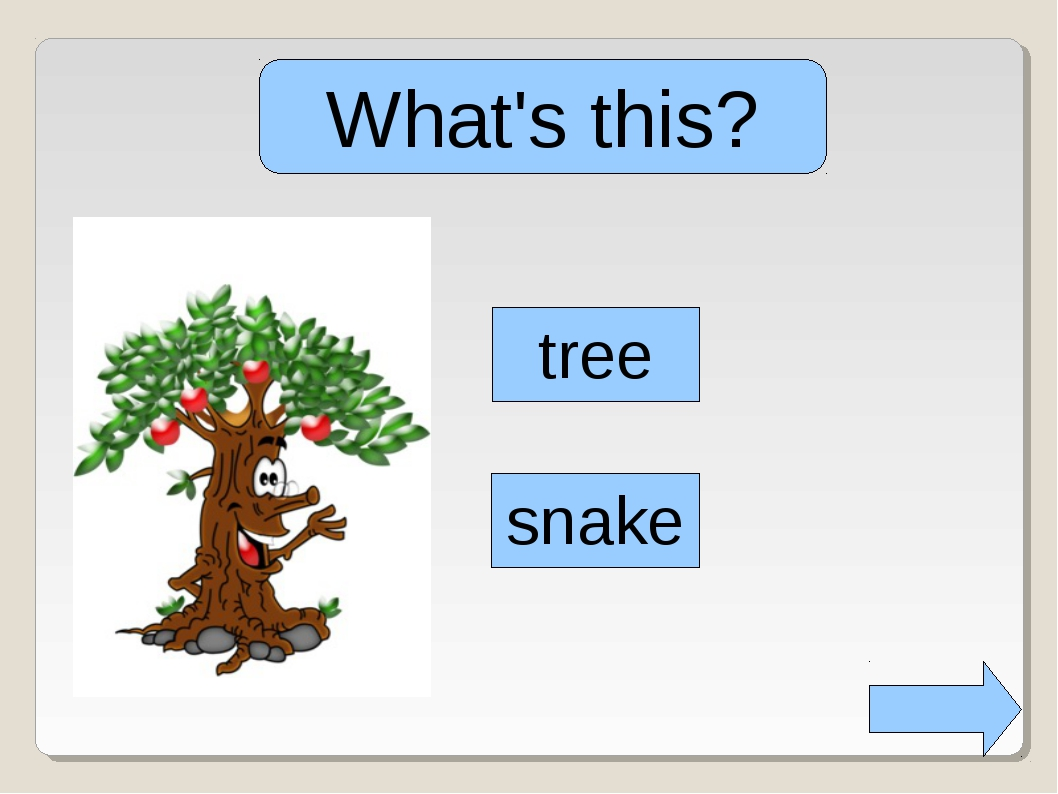 What's this? tree snake