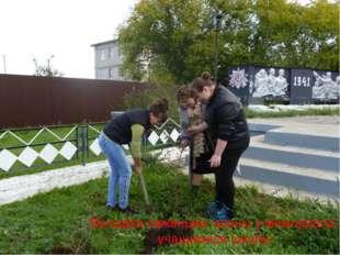 Высадка саженцев сосны у мемориала учащимися школы