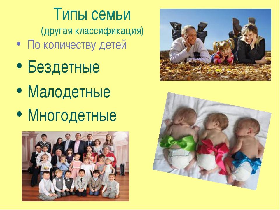 Типы семьи (другая классификация) По количеству детей Бездетные Малодетные Мн...