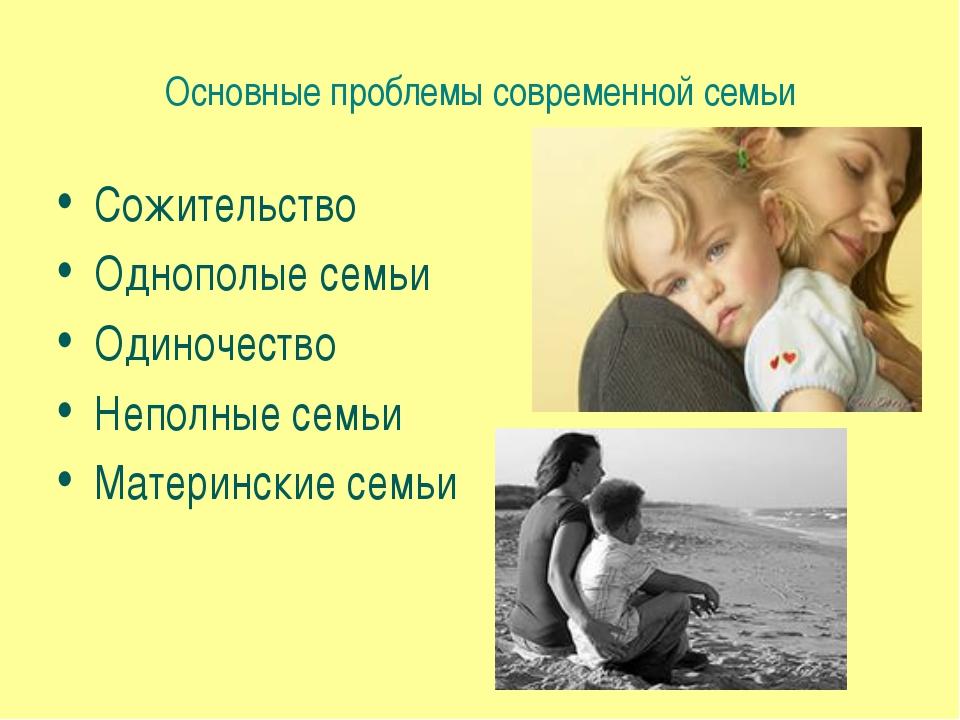 Основные проблемы современной семьи Сожительство Однополые семьи Одиночество...