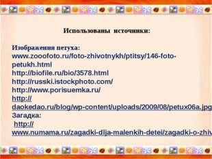 Использованы источники: Изображения петуха: www.zooofoto.ru/foto-zhivotnykh/