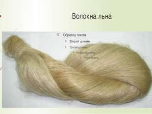 Внешний вид волокон гладкие, длинные, прямые, цвет от светло-серого до до тем