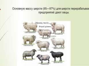 Виды волокон шерсти По составу волокон различают шерсть однородную (тонкую, п