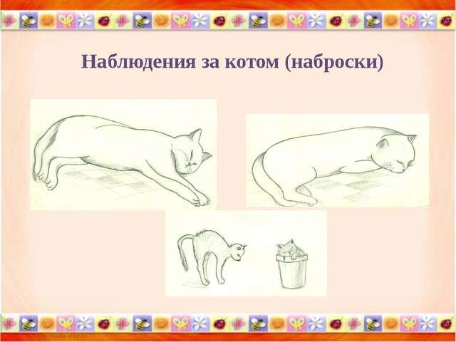 Как нарисовать домашних животных для 2 классов презентация по изо