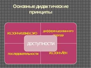 Основные дидактические принципы