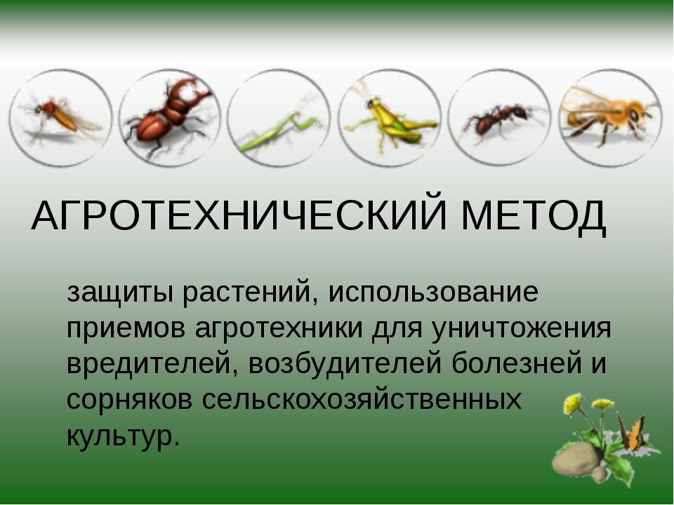 АГРОТЕХНИЧЕСКИЙ МЕТОД защиты растений, использование приемов агротехники для...