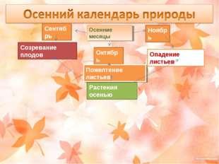 Осенние месяцы Сентябрь Октябрь Ноябрь Растения осенью Созревание плодов Поже