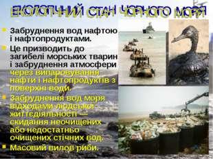 Забруднення вод нафтою і нафтопродуктами. Це призводить до загибелі морських