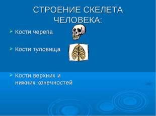 СТРОЕНИЕ СКЕЛЕТА ЧЕЛОВЕКА: Кости черепа Кости туловища Кости верхних и нижних