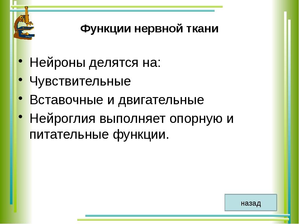 Учебно – методический комплекс 1. Программа для общеобразовательных учреждени...