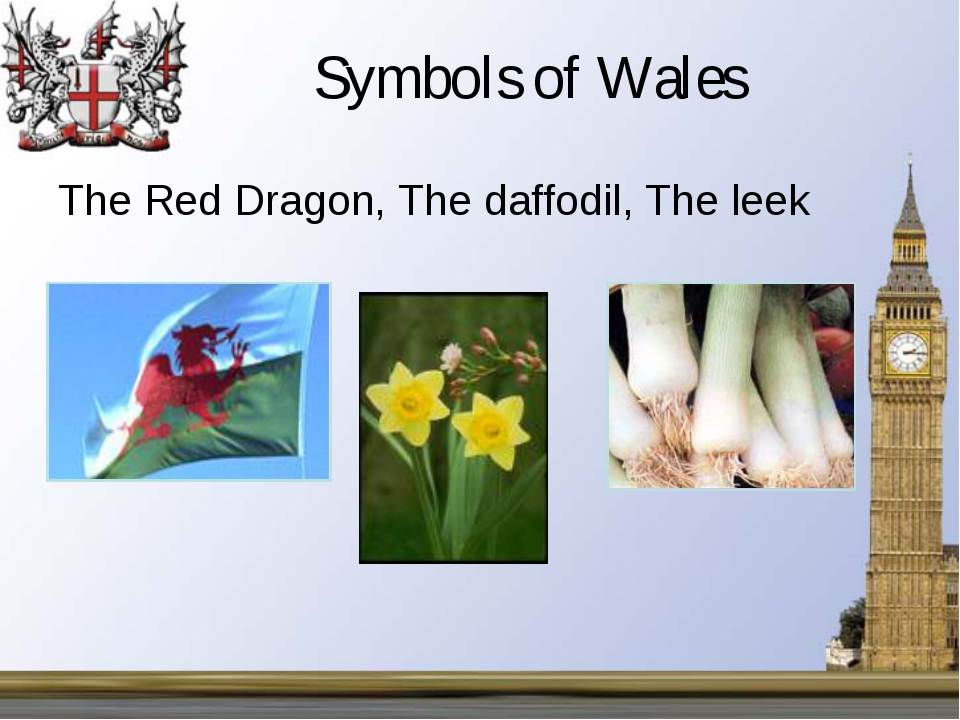 Symbols of Wales The Red Dragon, The daffodil, The leek ,